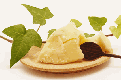 shea butter – SHEA TREASURE