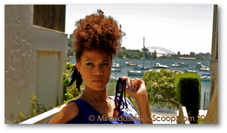 fierce stylish natural hair bloggers
