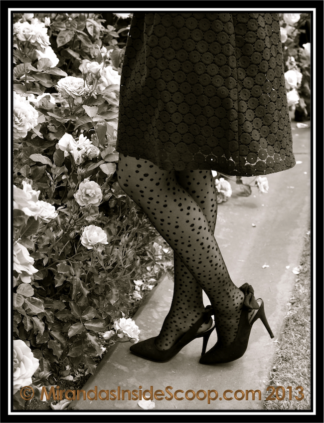 stockings trends pantyhose trends