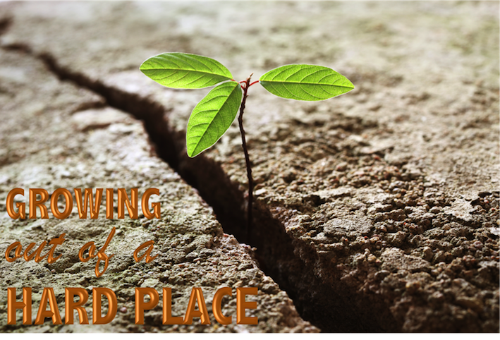 hard-times_courage_trials-and-tribulations_God-in-the-midst-of-our-troubles_personal-growth_plants-growing-out-of-concrete